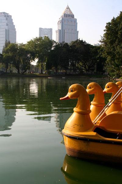 Duck boats, Lumphini Park, Bangkok.
