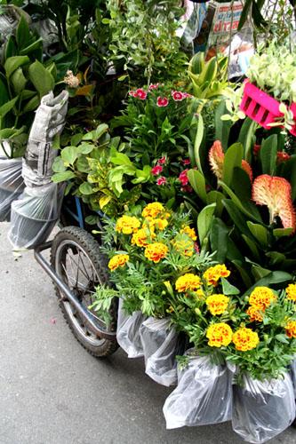 A mobile garden shop